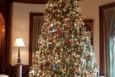 Christmas tree Fortnightly Club Dec 2011 (Vicky Hinshaw photographer)